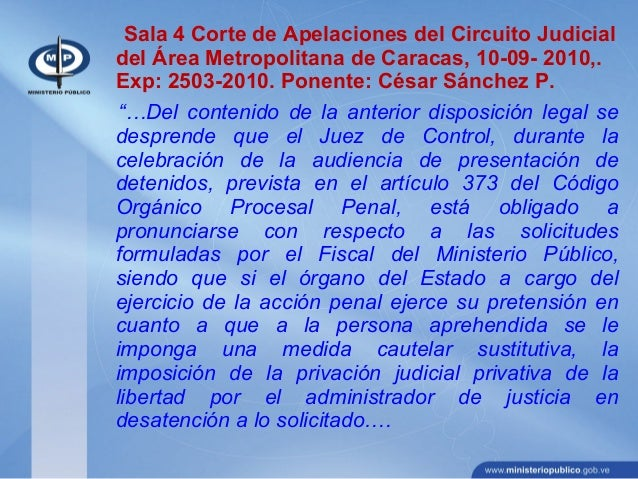 Circuito Judicial Penal : Accion penal