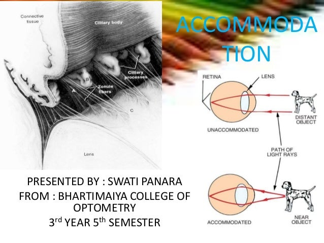 ACCOMMODA TION PRESENTED BY : SWATI PANARA FROM : BHARTIMAIYA COLLEGE OF OPTOMETRY 3rd YEAR 5th SEMESTER