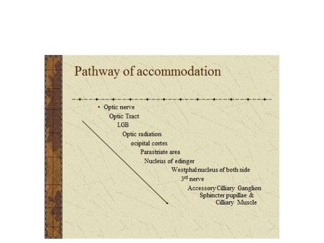 ANOMALIES OF ACCOMMODATION DIMINISHED ACCOMMODATION INCREASED ACCOMMODATION