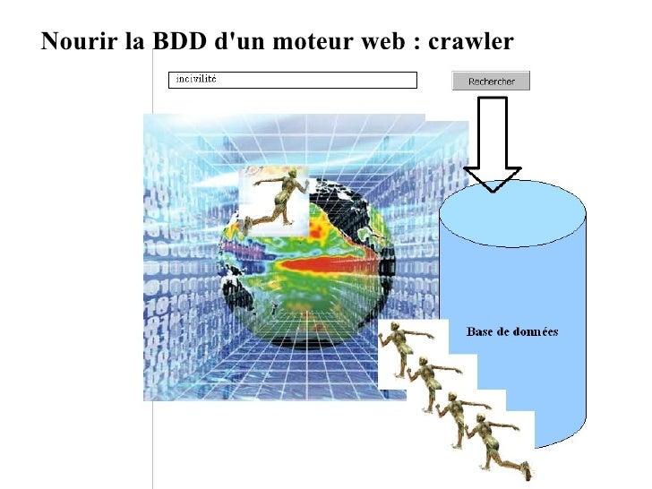 Nourir la BDD d'un moteur web : crawler