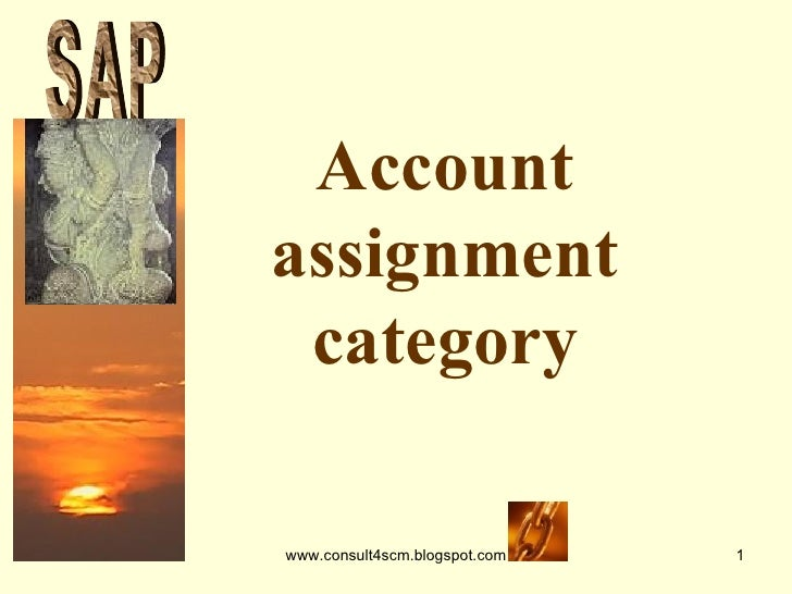 Account assignment category S A P