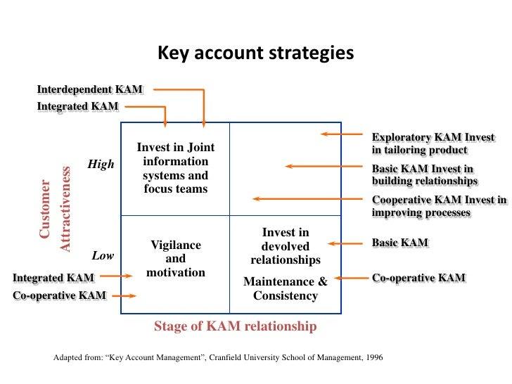 Key Account Plan Template. business plan templates free key ...