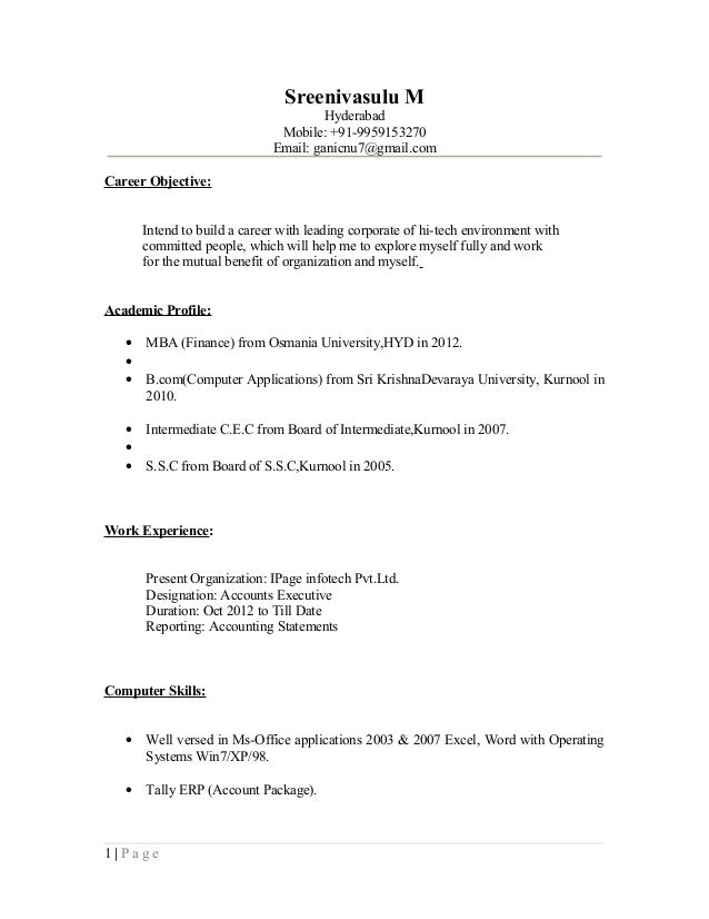 Accounts Executive Resume