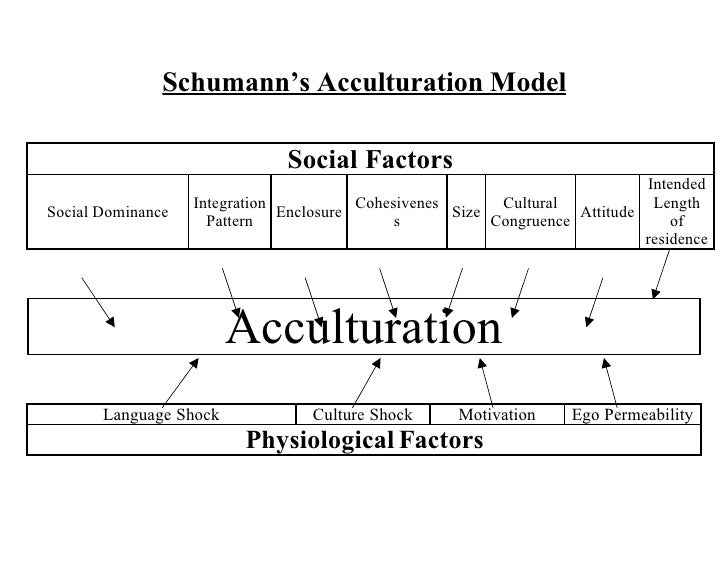 acculturation and deculturation The concept of acculturation strategies was introduced by berry (1997) as an extension of the earlier concept of acculturation attitudes (berry, 1980) this concept refers to the various ways that groups and individuals seek to acculturate.