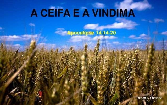 A CEIFA E A VINDIMA Apocalípse 14.14-20 Dimas C.Campos