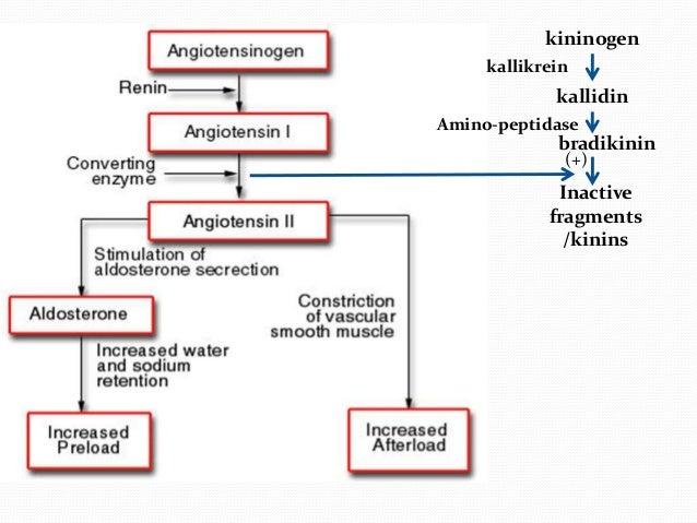 Lisinopril Medication Classification
