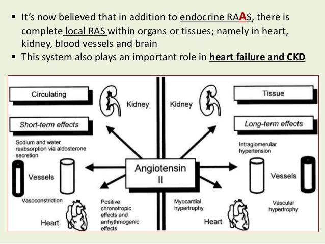 Cardio Renal Protection Through Renin Angiotensin Aldosterone System