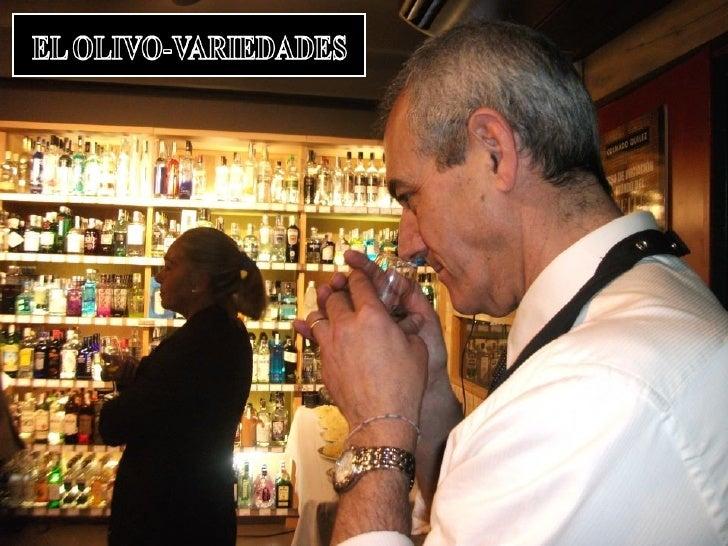 EL OLIVO-VARIEDADES•   Para obtener aceites de oliva de calidad hay que tener en cuenta las    técnicas de cultivo, el pro...