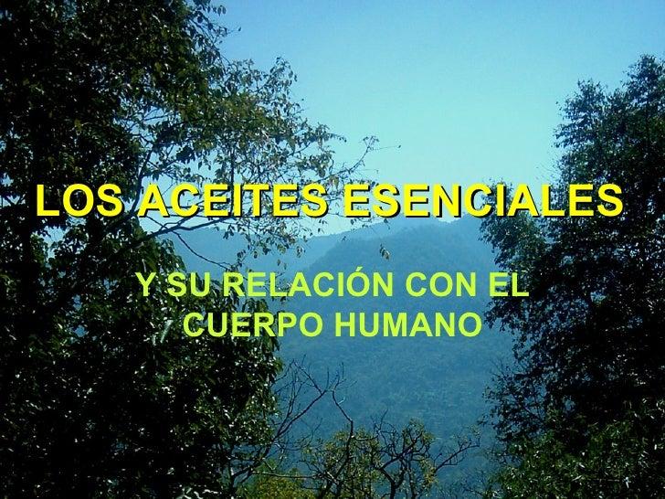 LOS ACEITES ESENCIALES Y SU RELACIÓN CON EL CUERPO HUMANO