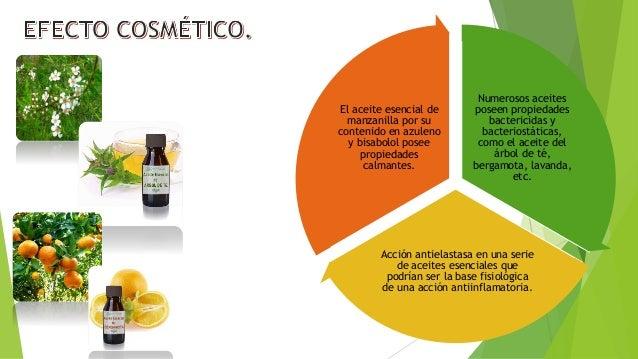 Aceites esenciales y alcaloides for Aceites esenciales usos