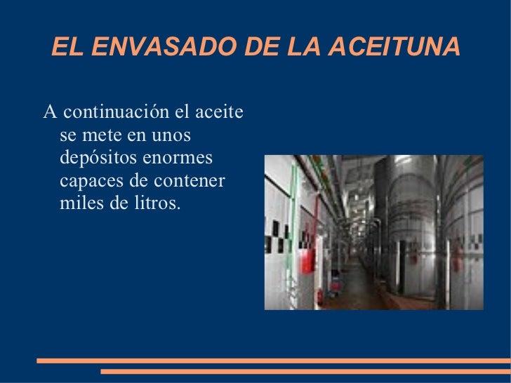 EL ENVASADO DE LA ACEITUNA <ul><li>A continuación el aceite se mete en unos depósitos enormes capaces de contener miles de...