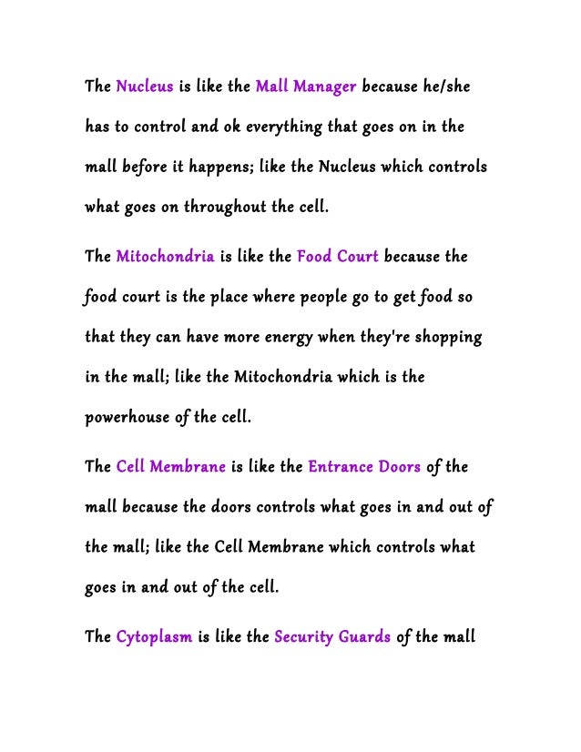 A cell is like a shopping mall animal cell – Cell Analogy Worksheet