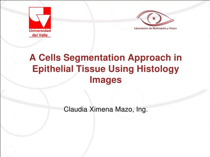 A Cells Segmentation Approach inEpithelial Tissue Using Histology              Images       Claudia Ximena Mazo, Ing.