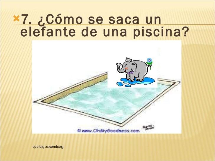 Acertijos para ni os for Como se construye una piscina