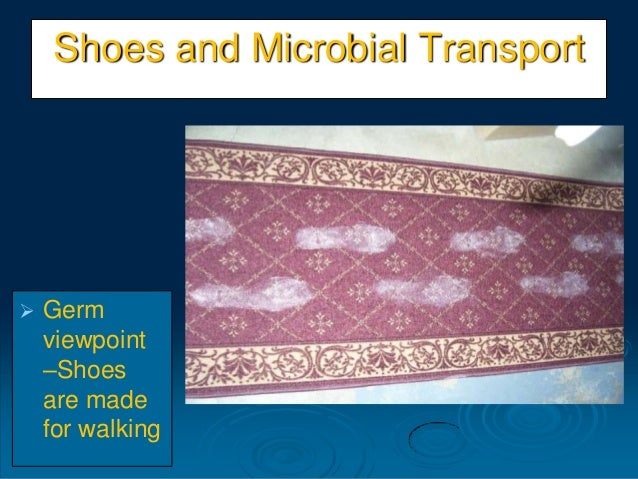 Shoes and Microbial Transport  Germ viewpoint –Shoes are made for walking