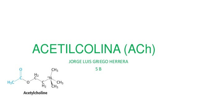 ACETILCOLINA (ACh) JORGE LUIS GRIEGO HERRERA 5B