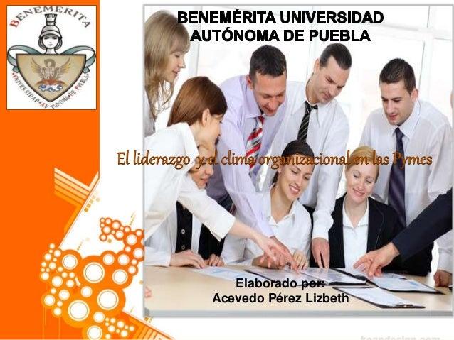Elaborado por: Acevedo Pérez Lizbeth