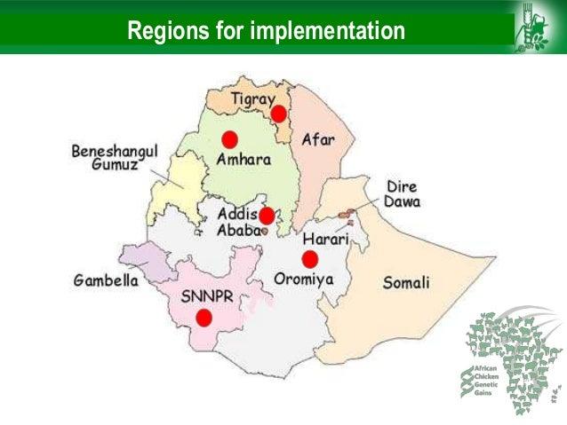 African Chicken Genetic Gains: ACGG-Ethiopia report