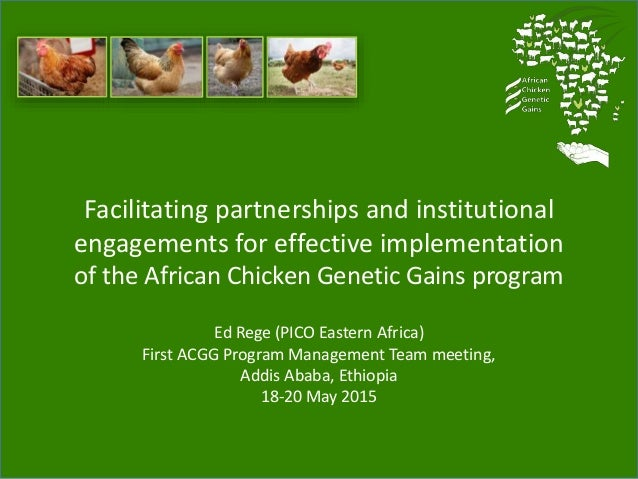 Facilitating partnerships and institutional engagements for effective implementation of the African Chicken Genetic Gains ...
