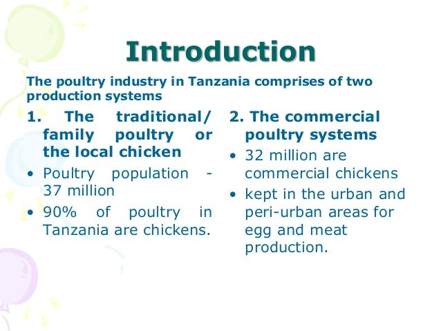 How to start a profitable poultry business