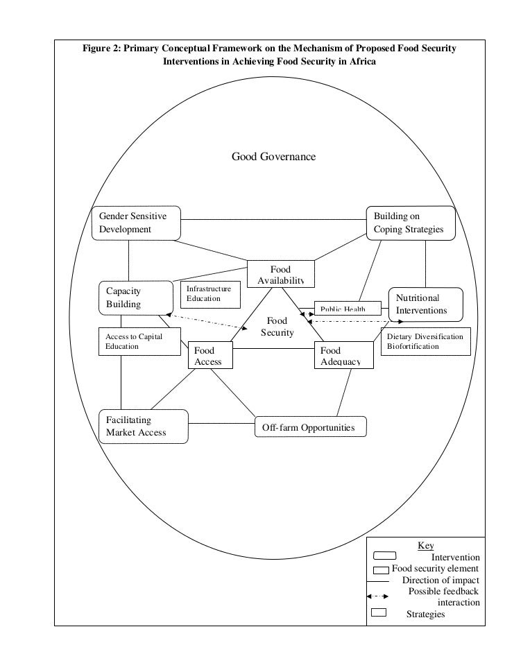Figure 2: Primary Conceptual Framework on the Mechanism of Proposed Food Security                  Interventions in Achiev...