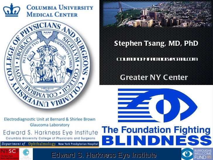 Edward S. Harkness Eye Institute Stephen Tsang, MD, PhD [email_address] Greater NY Center