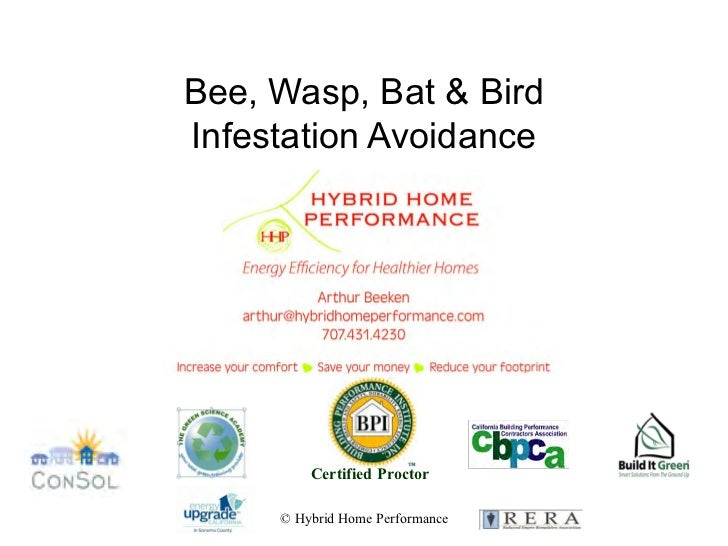 Bee, Wasp, Bat & BirdInfestation Avoidance         Certified Proctor     © Hybrid Home Performance