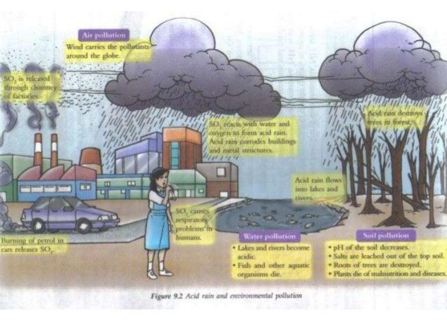 Acid rain effects on humans