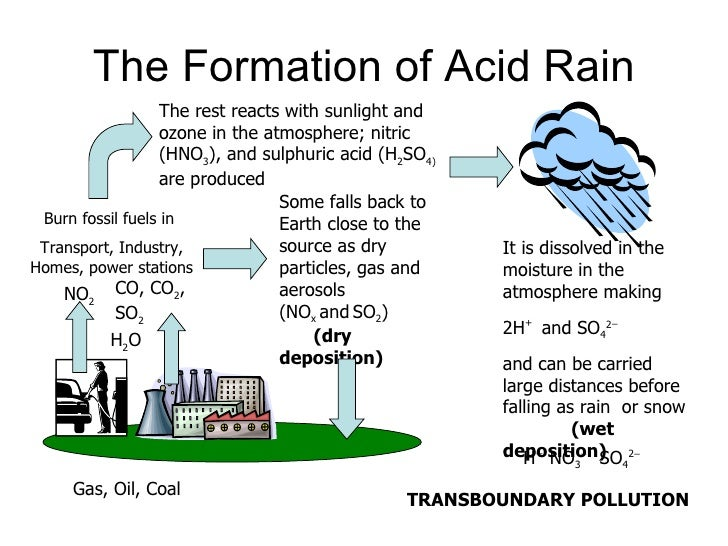 effect of dissolved carbon dioxide essay The amount of carbon dioxide that the ocean can take from the  of the greenhouse effect is the role of the oceans as a carbon  dissolved from limestone and.