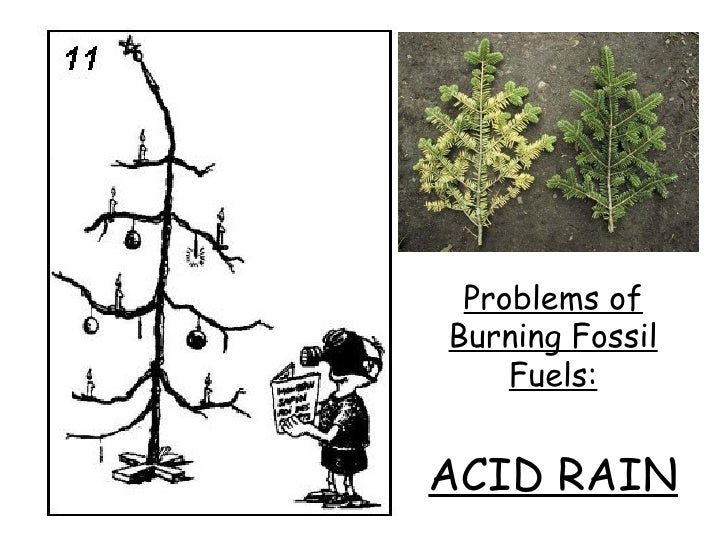 the acid rain issue essay Acid rain essay 3 (400 words) acid rain refers to a mixture of deposited material (wet or dry) coming from the atmosphere having huge amounts of nitric acid and sulphuric acid.
