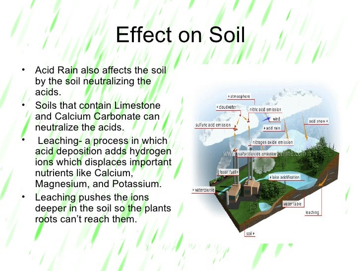 effect of acid rains on environment Acid rain could also effect on the air which can makes the acid rain pollution most of the breathing and lung problems in children and adults who have asthma were linked to acid air pollution there are many health problems that occur in the us and canada each year because of this problem.