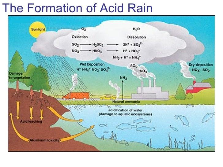 diagram showing acid rain - simple wiring diagram