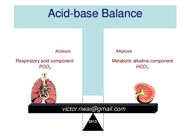 the maintenance of the acid base Cellcom will be undergoing maintenance on sunday, july 29 from 12:01pm to 3: 00pm est  quantifying nucleic acid base pairing free energy  the entropy  cost of forming hydrogen bonds between base pairs is offset by the concomitant.