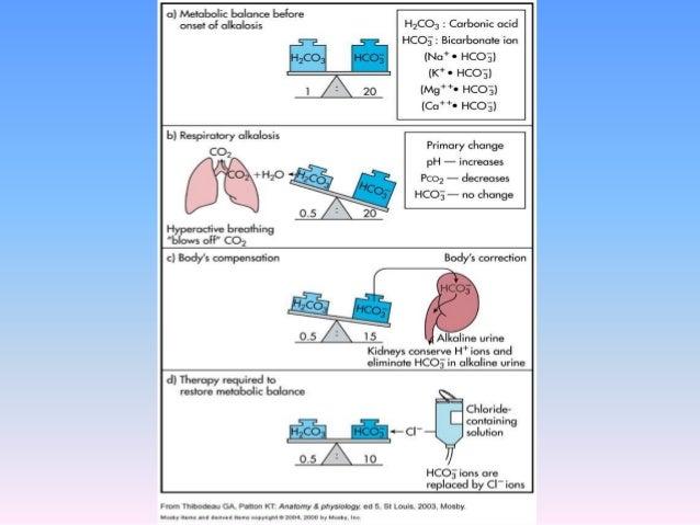 acidosis and alkalosis, Skeleton