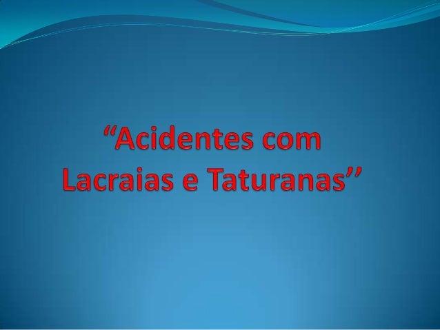 A Lacraia quando pica causa dor e vermelhidão local, sem outras repercussões, já a Centopeia ou piolho- de-cobra, ao ser e...