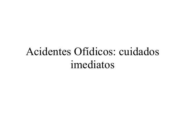 Acidentes Ofídicos: cuidadosimediatos