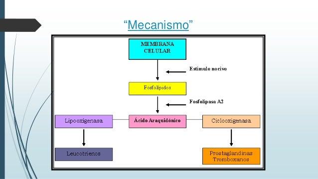 view Spinocerebellar Ataxia