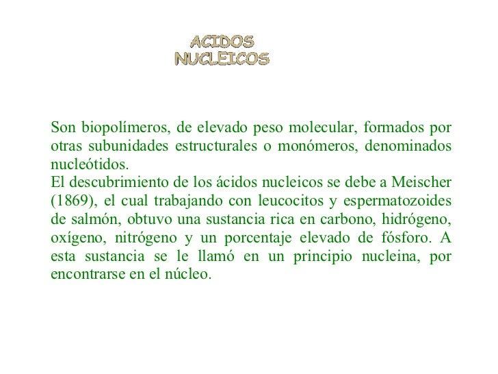 Son biopolímeros, de elevado peso molecular, formados por otras subunidades estructurales o monómeros, denominados nucleót...