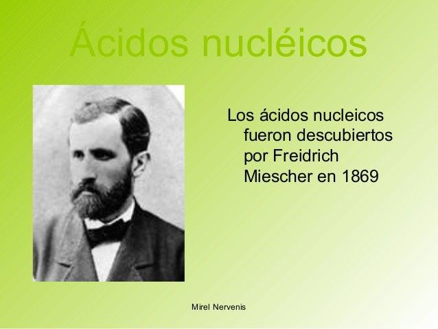 Ácidos nucléicos Los ácidos nucleicos fueron descubiertos por Freidrich Miescher en 1869 Mirel Nervenis
