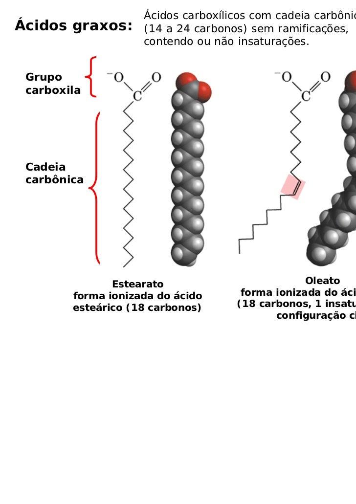 Ácidos carboxílicos com cadeia carbônica longaÁcidos graxos:      (14 a 24 carbonos) sem ramificações,                    ...