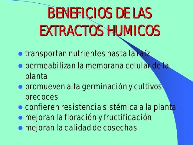 Acidos humicos y fulvicos
