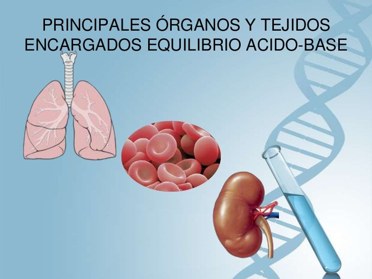 Acidosis y Alcalosis Slide 2