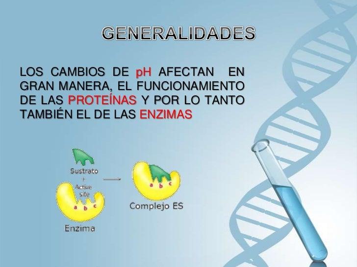 Acidosis y Alcalosis Slide 3