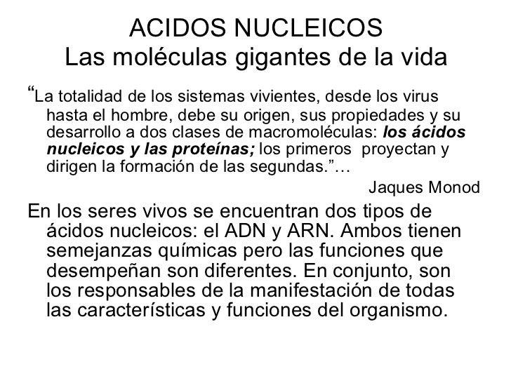 """ACIDOS NUCLEICOS Las moléculas gigantes de la vida <ul><li>"""" La totalidad de los sistemas vivientes, desde los virus hasta..."""