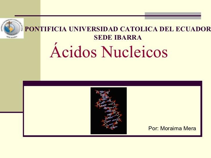 Ácidos Nucleicos Por: Moraima Mera PONTIFICIA UNIVERSIDAD CATOLICA DEL ECUADOR SEDE IBARRA