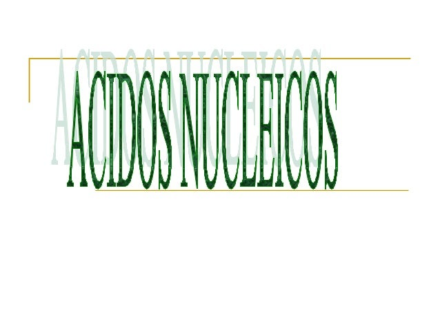 ACIDOS NUCLEICOS:GENERALIDADES YCOMPOSICION   Son compuestos que    tienen carácter ácido,    se encontraron por    prime...