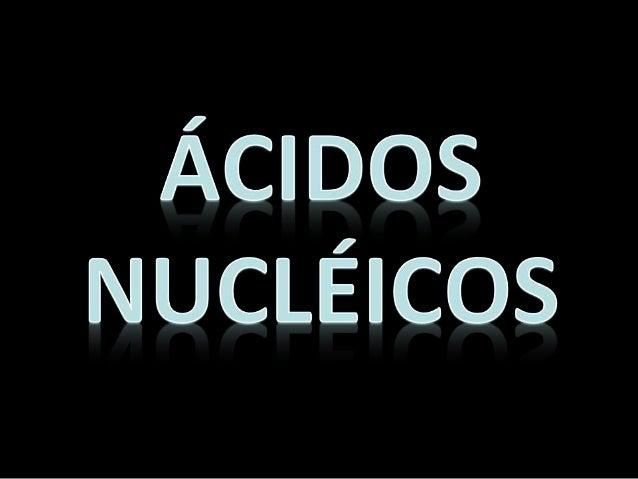 Constituintes: Nucleotídeos: formados por três diferentes tipos de moléculas: • um açúcar (pentose): desoxirribose no DNA ...