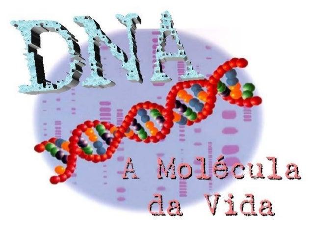 São moléculas complexas produzidas pelas células e essenciais a todos os organismos vivos. Estas moléculas governam o dese...