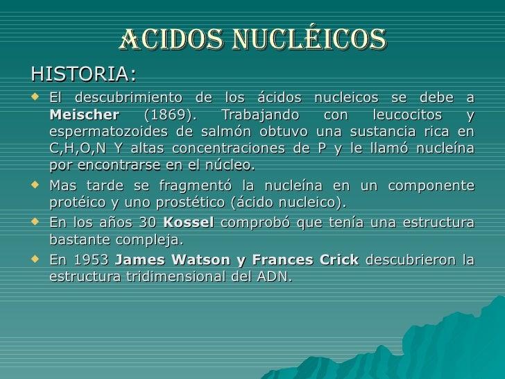 ACIDOS NUCLÉICOS <ul><li>HISTORIA: </li></ul><ul><li>El descubrimiento de los ácidos nucleicos se debe a  Meischer  (1869)...