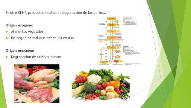 para bajar el acido urico remedios caseros hierbas para prevenir la gota acido urico gota fotos